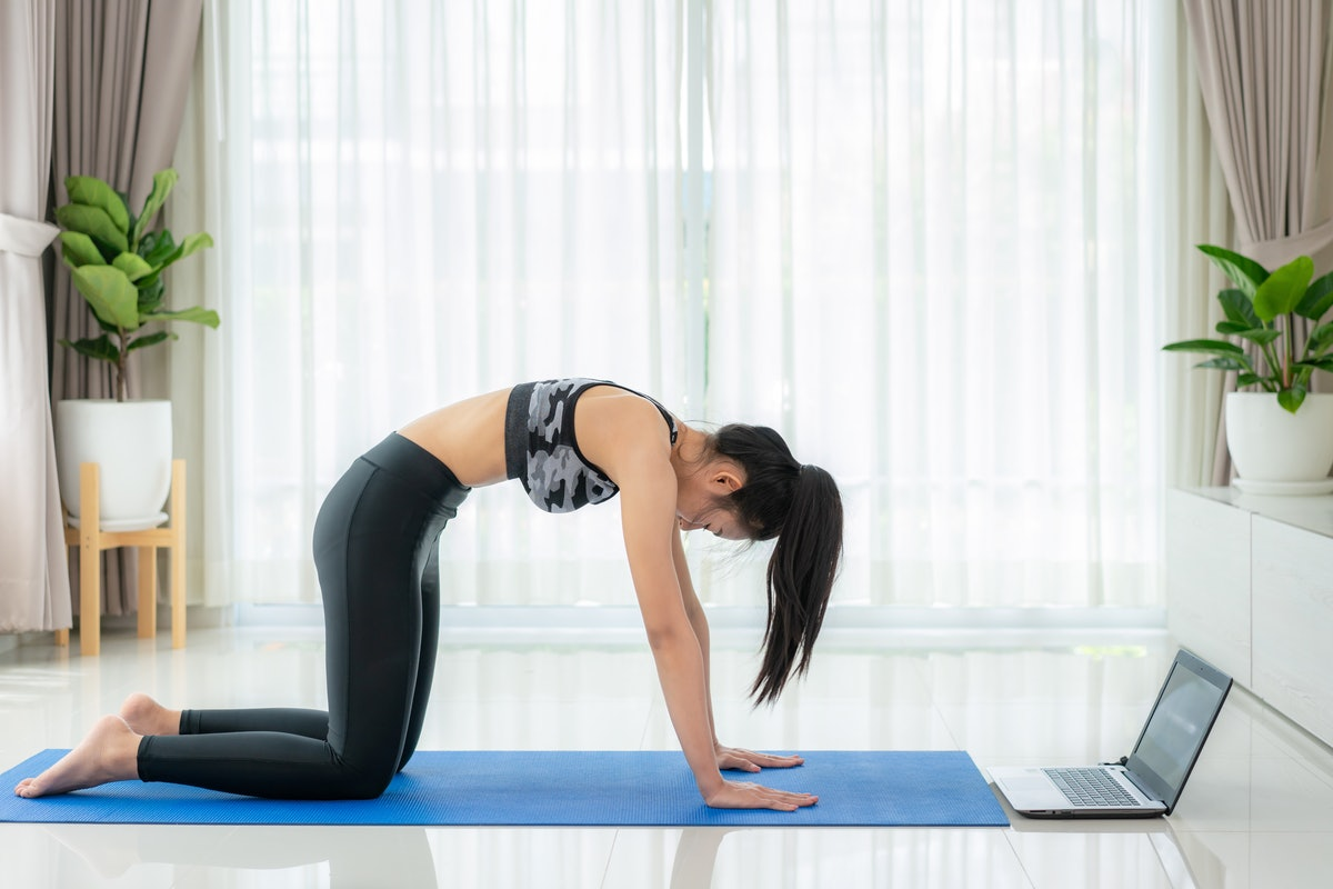Try cat cow as a yoga-based stretch for upper back pain relief.