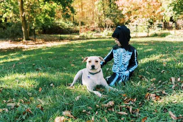boy dressed as skeleton for halloween with dog