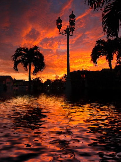 A flooded street at sunrise in Miami.