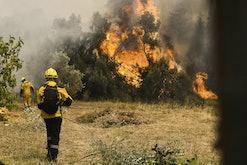 ââââATHENS, GREECE - AUGUST 06: Firefighters operate during a wildfire in Ipokratios Politeia Afidne...