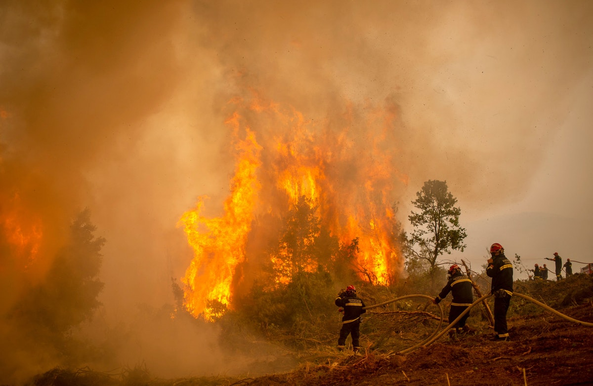 Serbian firefighters use a water hose to extinguish the burning blaze of a forest fire in the villag...