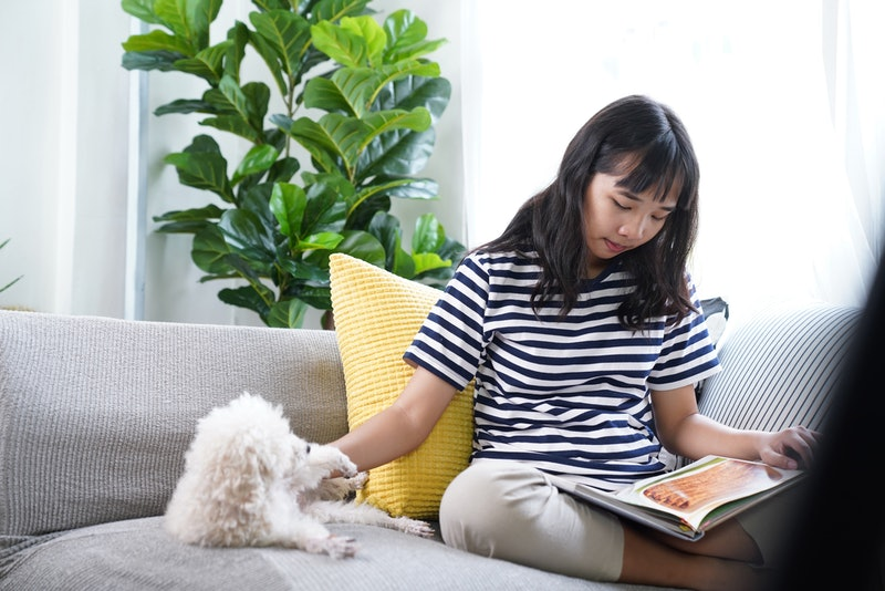 Young woman stay home relaxing with favorite dog