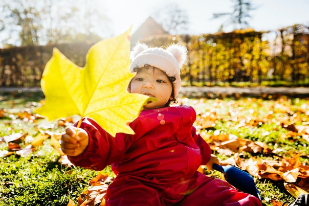 A toddler sitting on the ground looking at an autumn leaf while spending the day in the park.