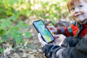 Mother and Son Hiking in the Forest and Learning about Plants and Nature with Mobile App. They are u...