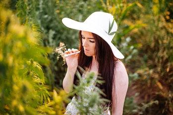 Young couple enjoying in marijuana field