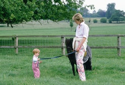 HIGHGROVE, UNITED KINGDOM - JULY 18:  Prince Harry And Princess Diana In The Grounds At Highgrove Wi...