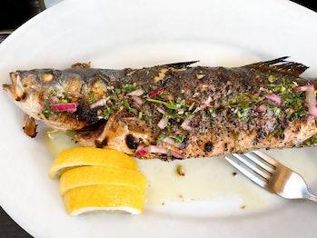 grilled branzino fish