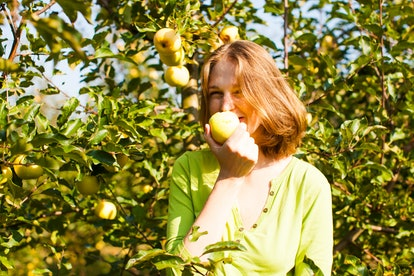 Use these apple picking puns for your adventures on the farm.