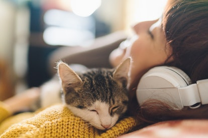 Capture you kitten's cutest moments with these captions for your cat's Instagram.