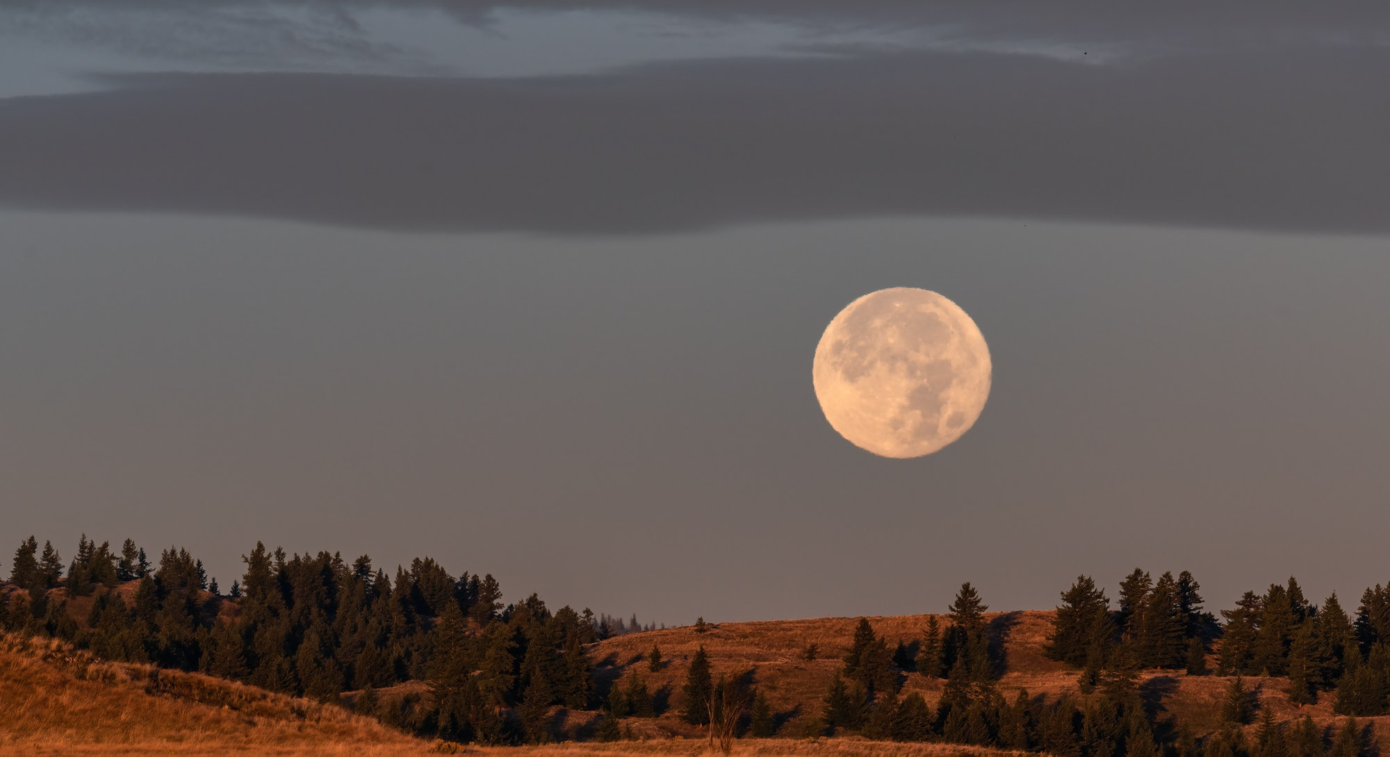 The October 2021 full moon will be in the bold fire sign, Aries.