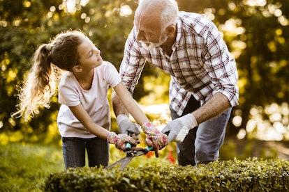 Photo of a more elder adult helping an older child garden.