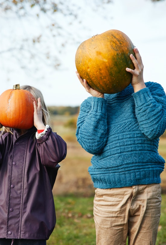 Celebrate autumn with these fall bucket list ideas.