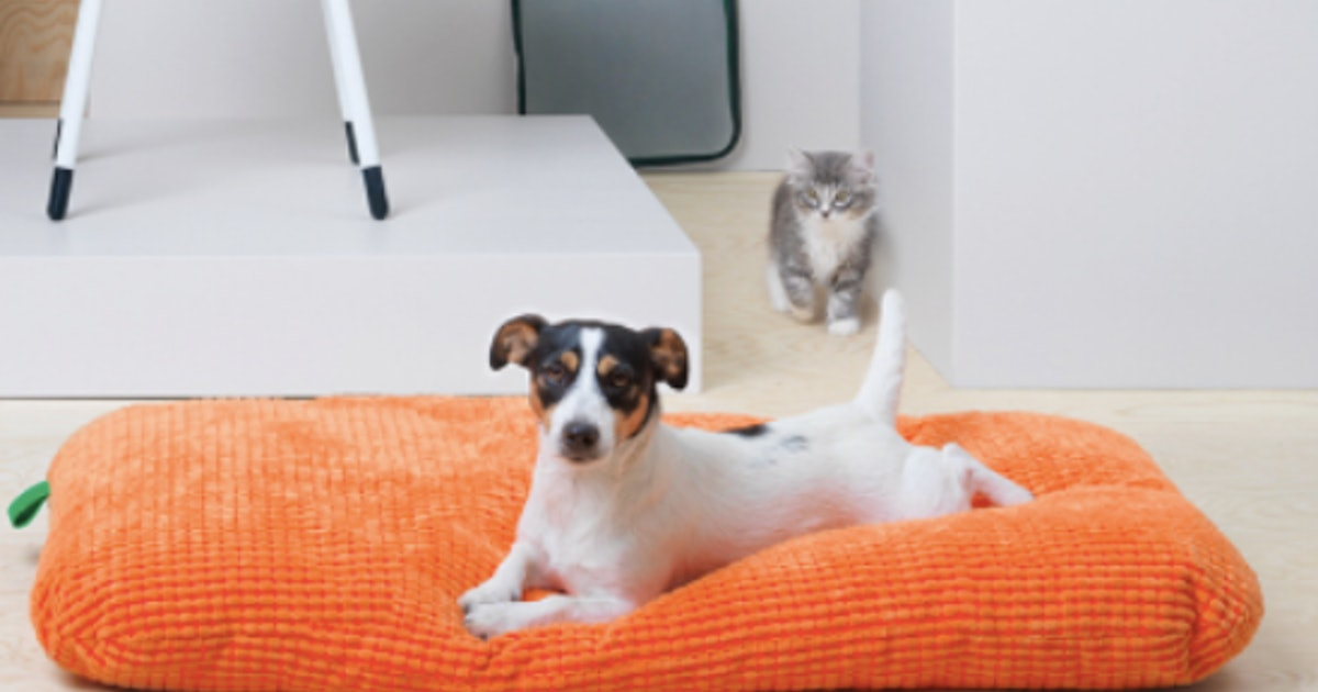 Ikeas New Pet Furniture Collection Is The Best Thing To