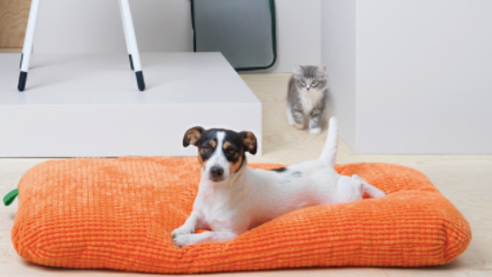 Ikea S New Pet Furniture Collection Is The Best Thing To Happen To