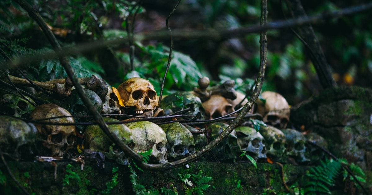 How Long Does It Take For Your Body To Decompose After You ...