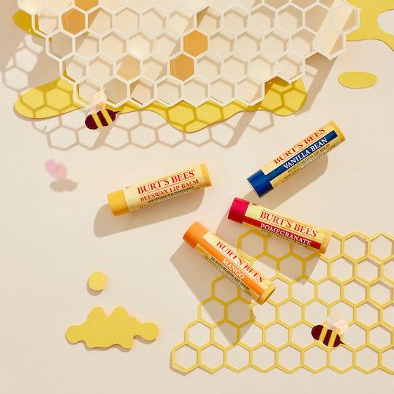 Burt Bees Beeswax Bounty Assorted Mix