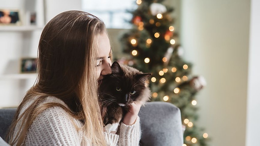 11 Best Gifts For Your Cat Obsessed Friend That Are Positively Purrfect