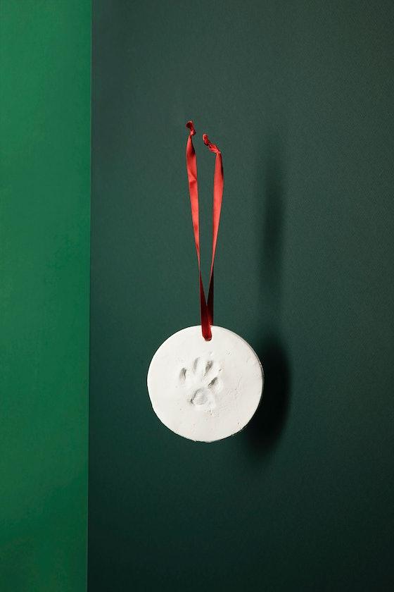 Pet Impression Ornament Kit