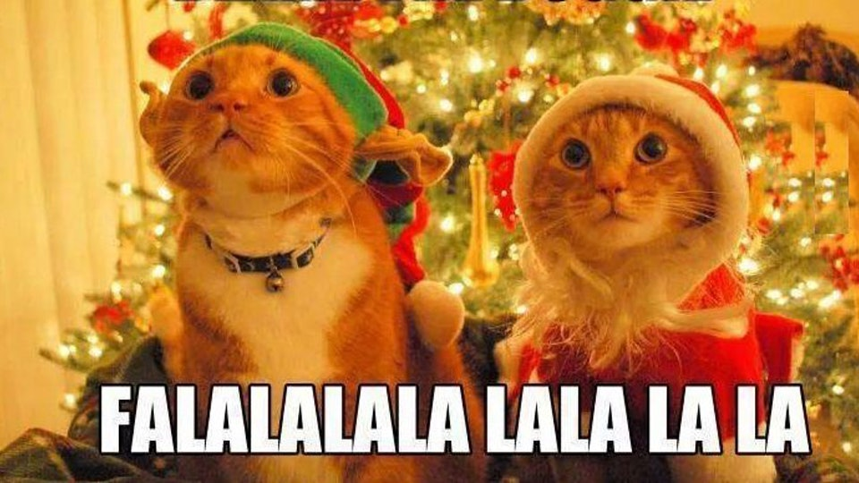 Funny Christmas Memes.24 Hilarious Christmas Memes To Post During The Holidays