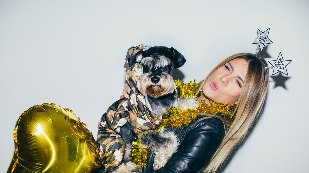 7 Things To Do With Your Dog On New Year's To Start Off A ...