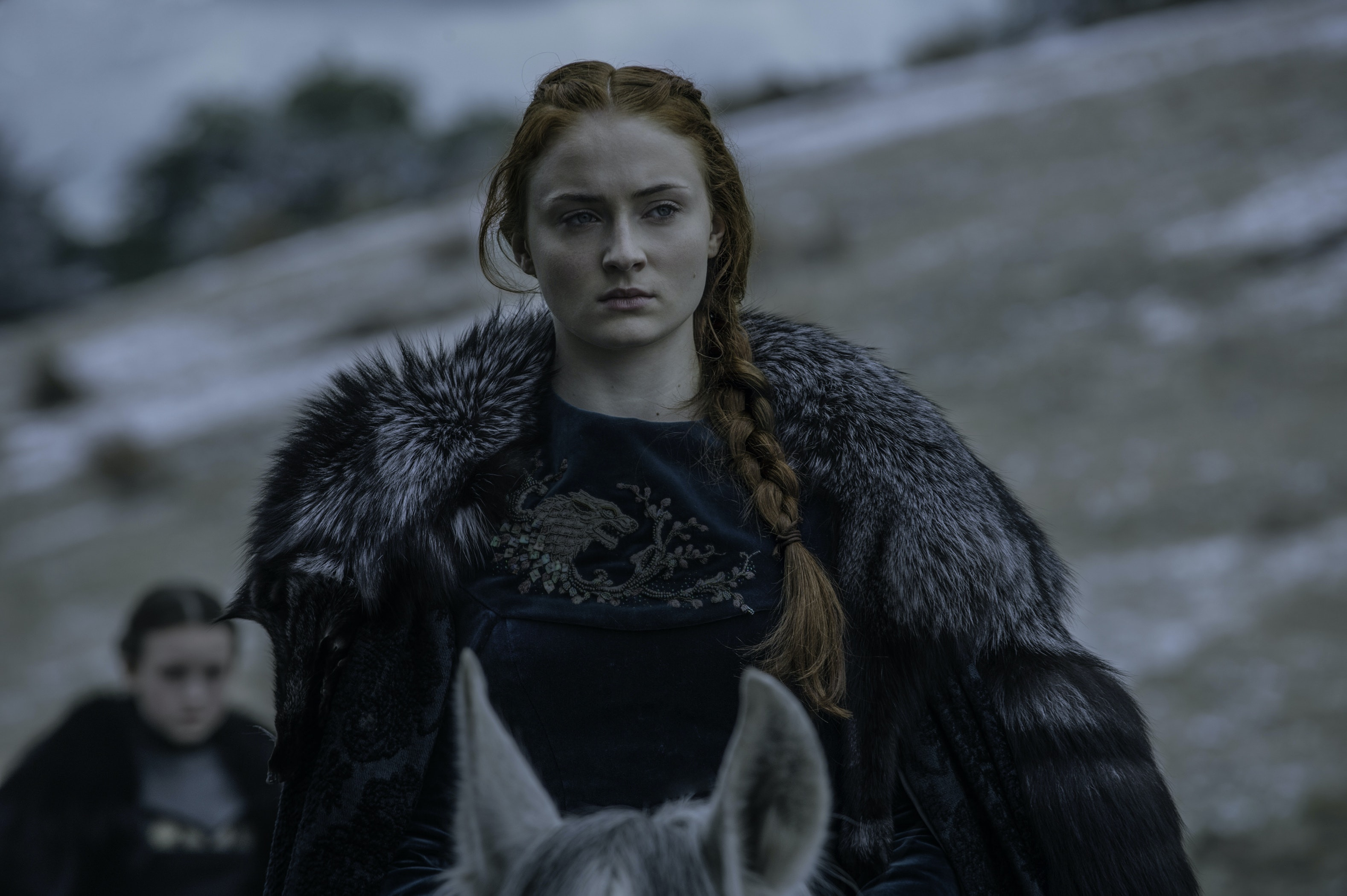 Sansa S Quote About A Lone Wolf Dying In Game Of Thrones