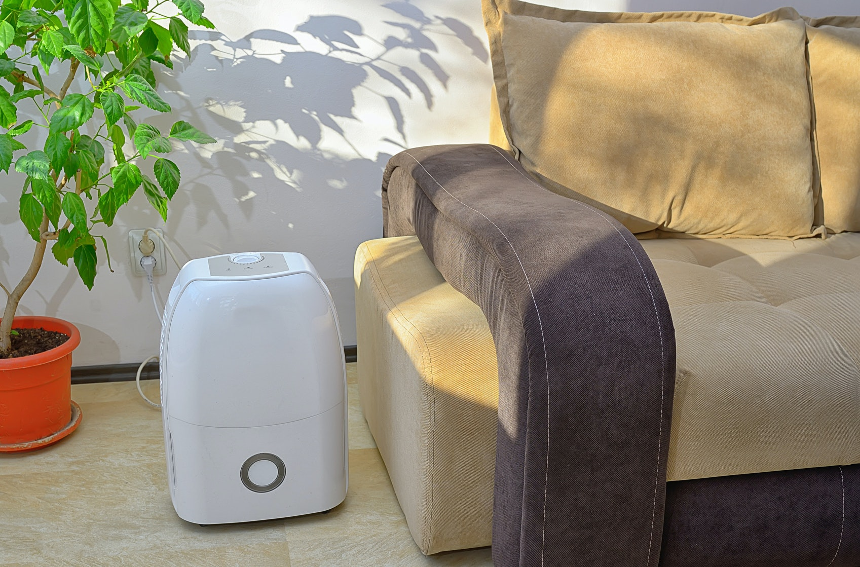 The 5 Quietest Dehumidifiers