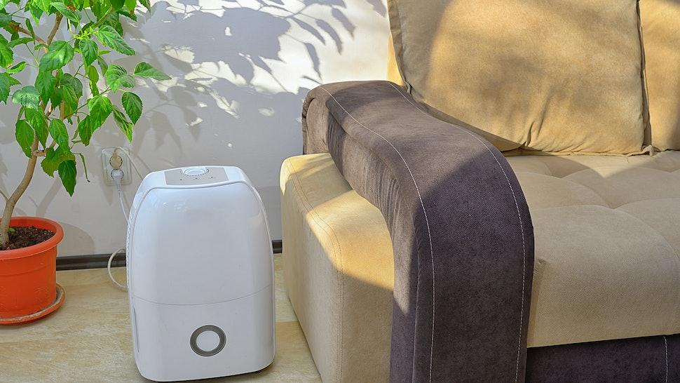 The 5 Quietest Dehumidifiers