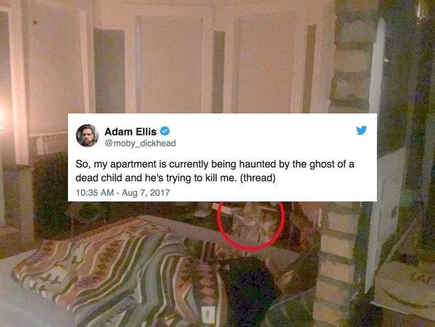 Adam Ellis/Twitter