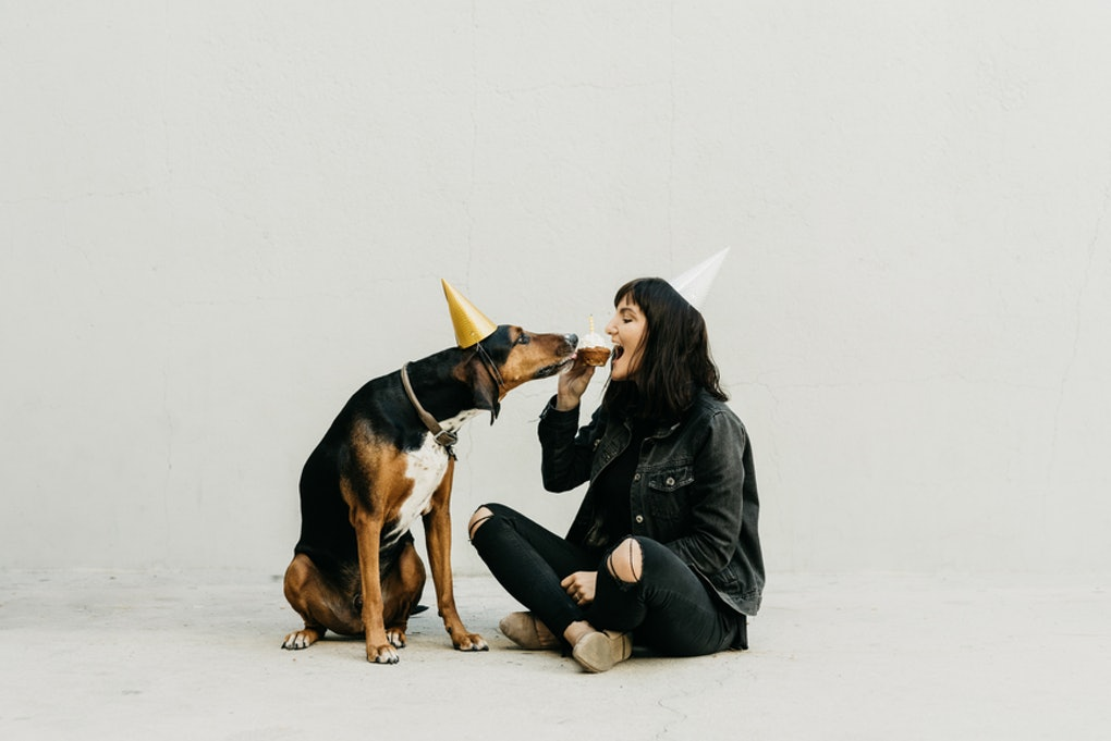 22 Instagram Caption For Dogs Birthday That Are Pawsitively Adorable