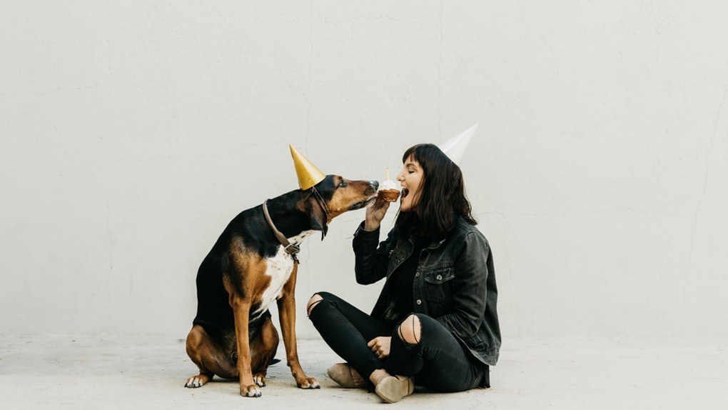 22 Instagram Caption For Dog's Birthday That Are Pawsitively Adorable