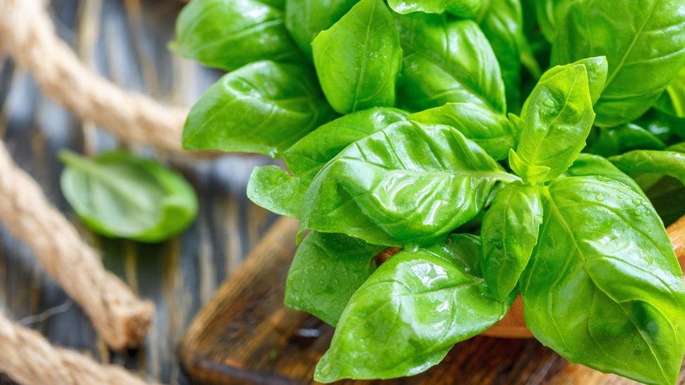 Use Basil For Hair Loss and Acne Treatment, Not Just A