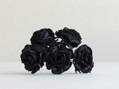 35mm Black Paper Roses