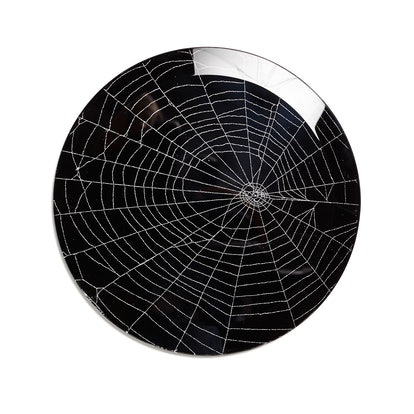 Spider Web On Glass