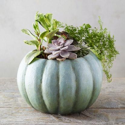 Pumpkin Pot, Large