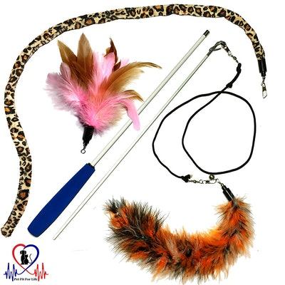 Pet Fit For Life Multi-Feather Teaser and Exerciser