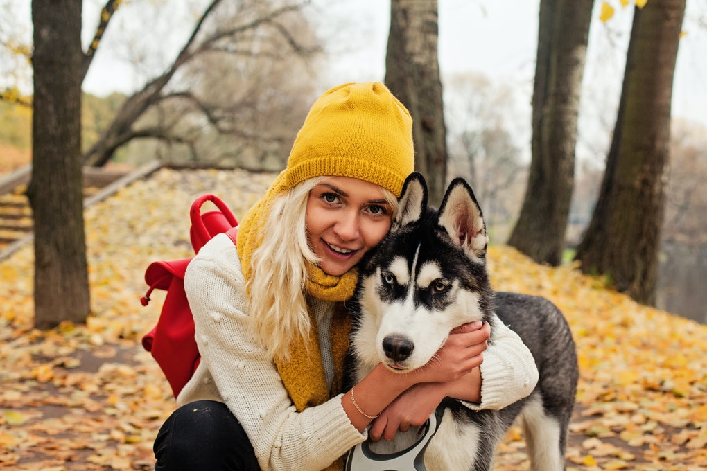 30 Captions For Fall Pictures With Your Dog That Are Pawsitively