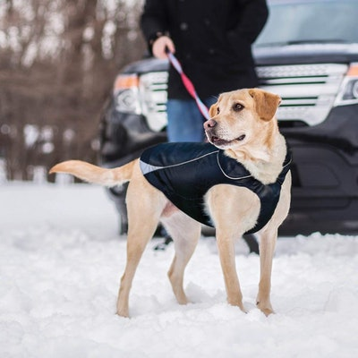 Kurgo North Country Dog Winter Coat