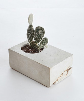 Vale Concrete Block Planter With Cactus, Gray and Gold