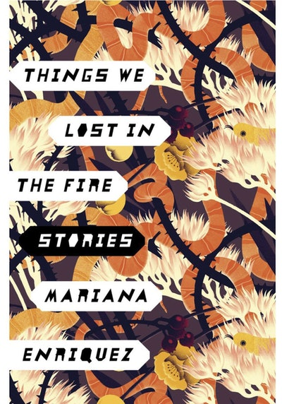 'Things We Lost in the Fire' by Mariana Enriquez