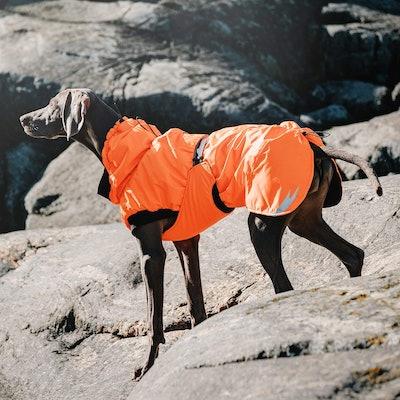 Hurtta Pet Collection Summit Parka