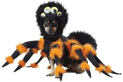 California Costumes Spider Costume