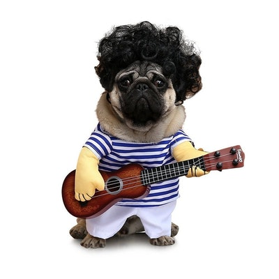 FanQube Fancy Guitar Player Costume for Dogs & Cats