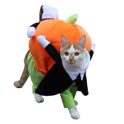 UHeng Funny Pet Pumpkin Costume