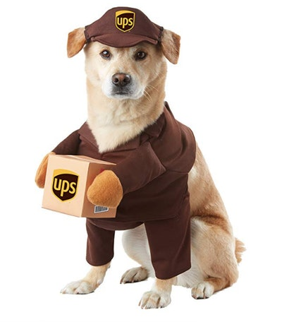 California Costumes UPS Pal Pet Costume