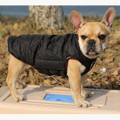 Kuoser Reversible Dog Coat