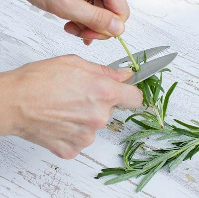 Kale And Herb Razor