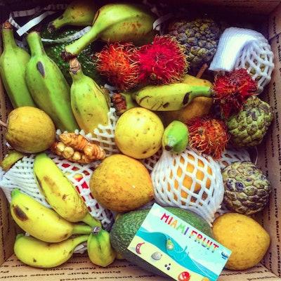 Miami Fruit Variety Box