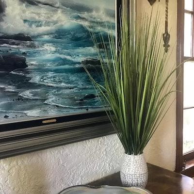 Desktop Foliage Grass in Pot