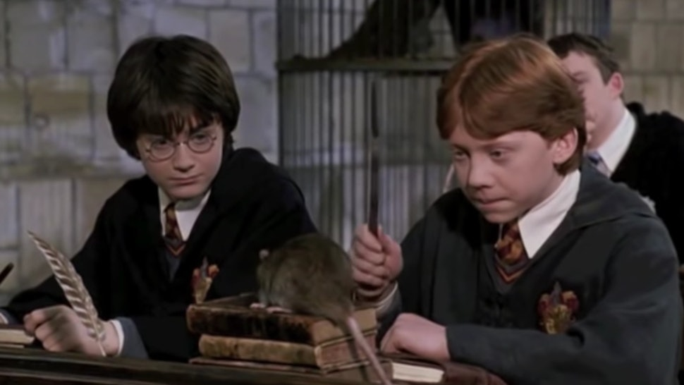 233ec3399 A  Harry Potter  Law Course Is Available At A University In India    Hogwarts Is Real