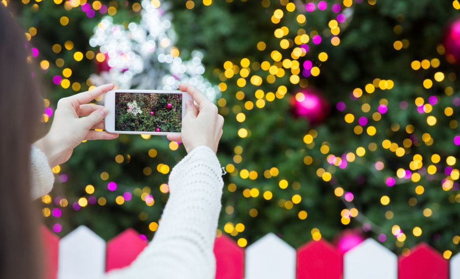 These Instagrammable Christmas Trees In The U.S. Will Make Your Feed ...